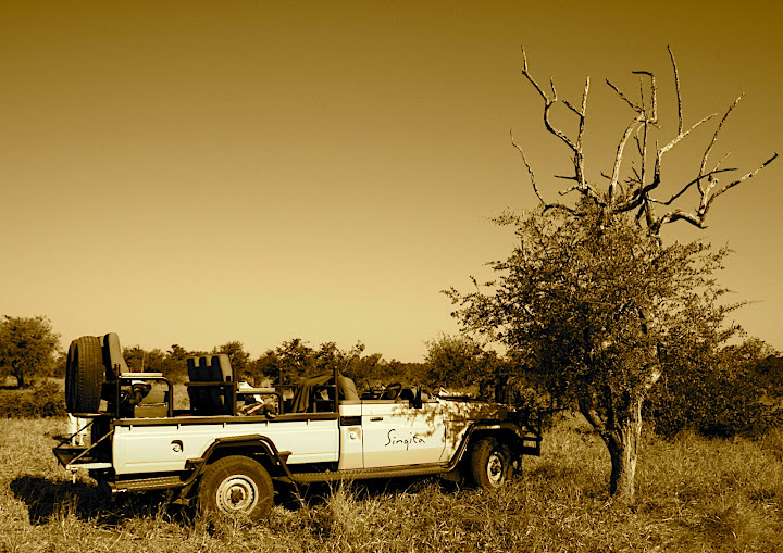Singita Pamushana Lodge Safari Experience.