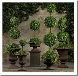 RH Topiary
