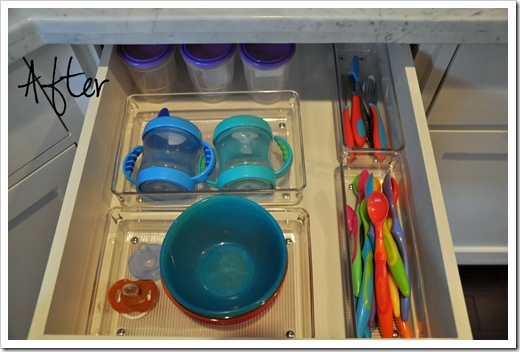 Kitchen Organization 013