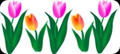tulips-border