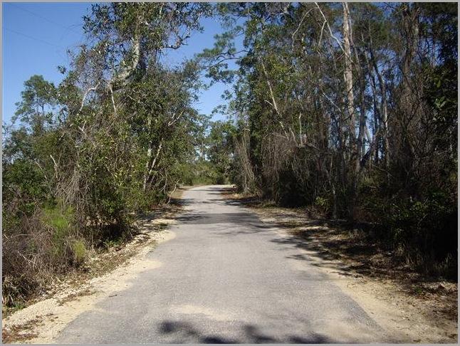 Hiking Biking Trail
