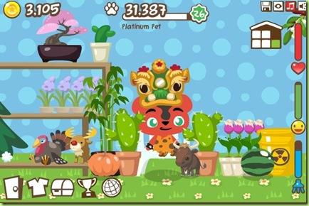 cactus-giardino-pet-society