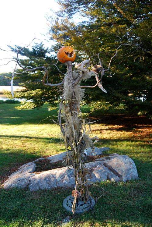 pumpkin man.jpg2
