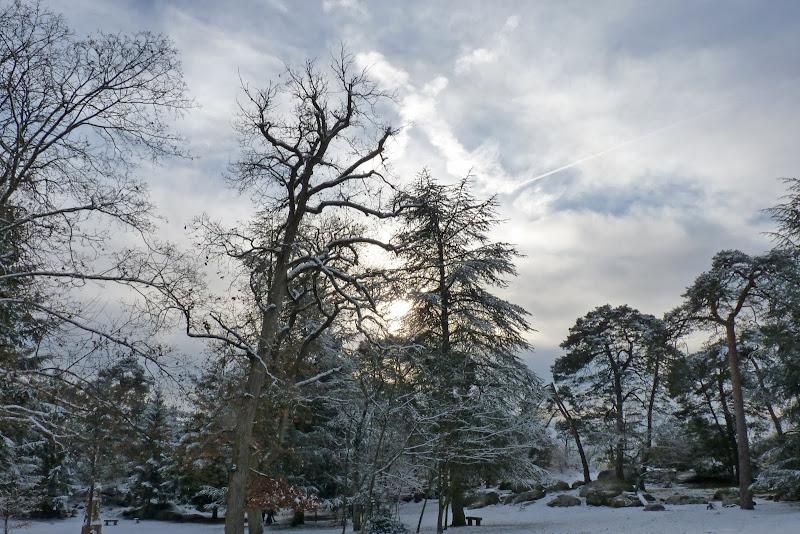 Forêt de FONTAINEBLEAU Franchard