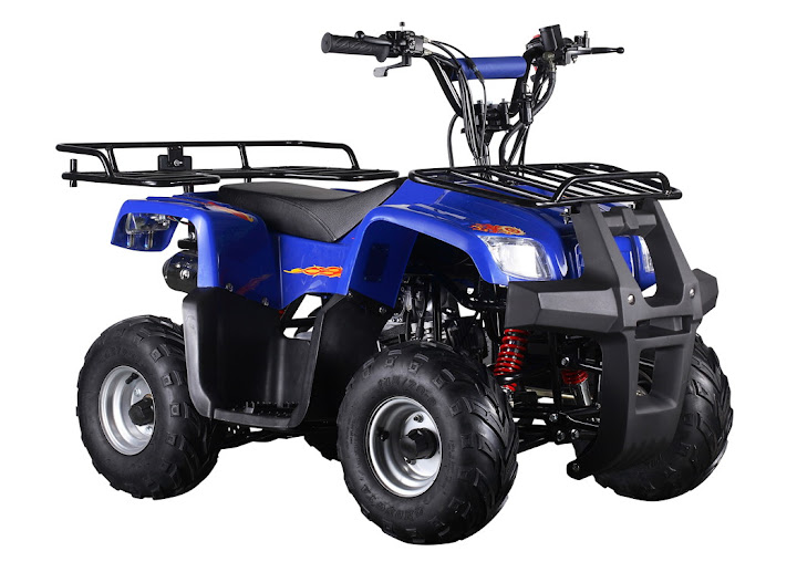 110cc Kids Farm Quad Bike ATV 4 Stroke Petrol