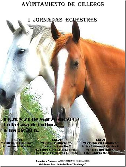 cartel-caballos-DEF.
