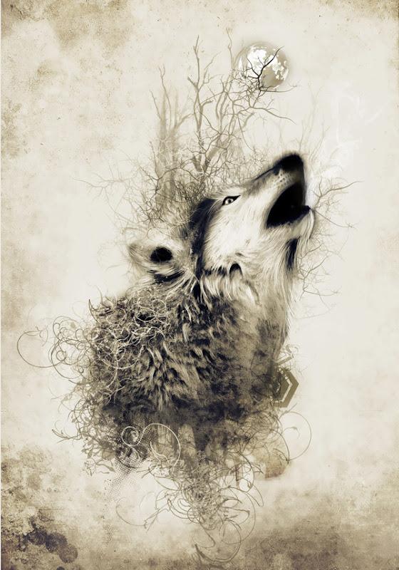Akar Wolf