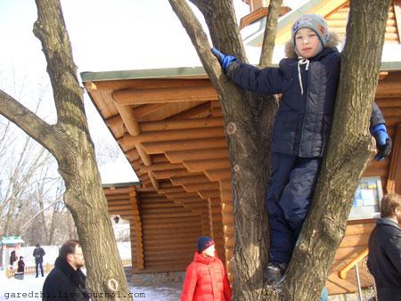 Масленица в Киеве. Дети лазят по деревьям.
