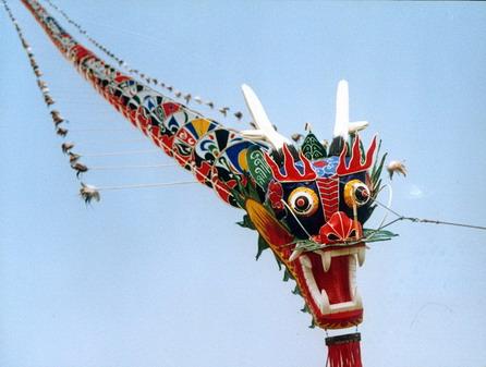 china tradition shop chinese kites