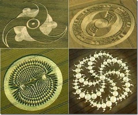 Contoh-motif-gambar-crop-circle