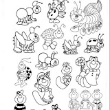 24 animals.jpg