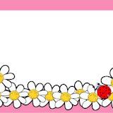 etiq. margaritas- marco rosa.GIF.jpg