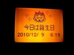 IMG_20101209224808.jpg