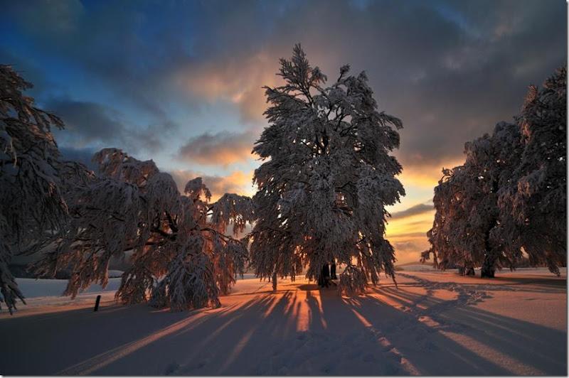 Winter Licht Michael Hotze