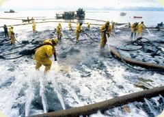 oil_spill11162
