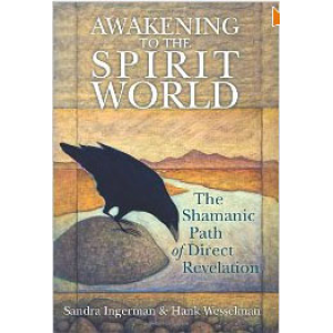 Awakening To The Spirit World The Shamanic Path Of Direct Revelation Cover