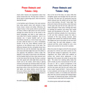 Issue 23 July 2008 Vol 2 Power Animals And Totems Cover