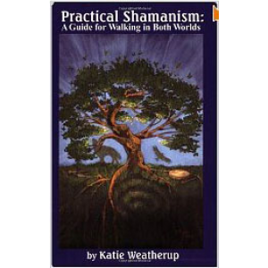 Practical Shamanism A Guide For Walking In Both Worlds Cover