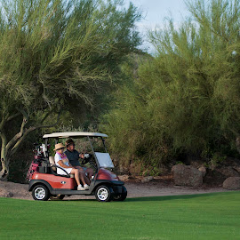 by Laura Johnston - Sports & Fitness Golf ( arizona )