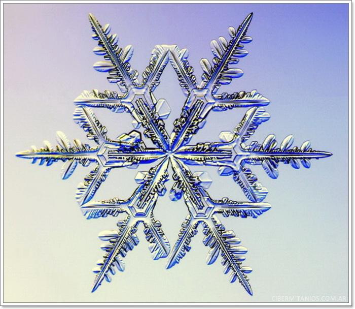 Snowflake08jpg