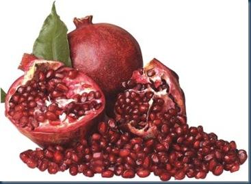 granatapfel_1