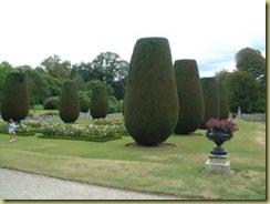 rose garden lanhydrock