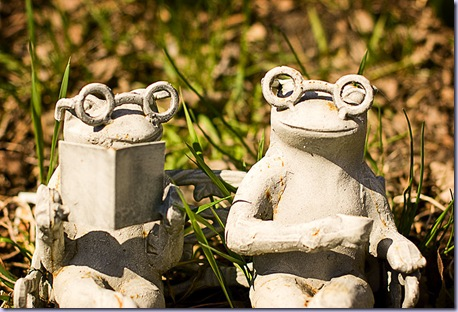 090503_3819-frogs-LAB