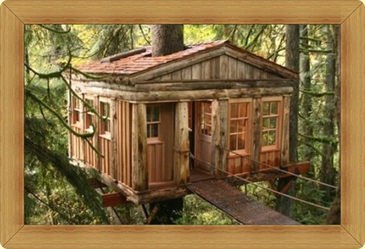 cabin tree hs