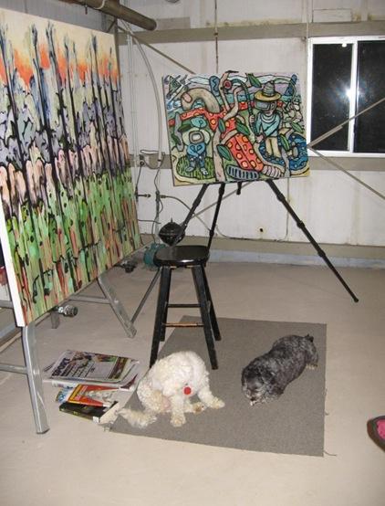 Studio dogs
