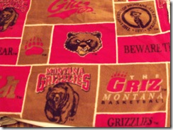 Grizzlies-fleece-sm