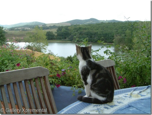 Maison Tranquille Eveningview--Glenne-Fleur_20050907_002_3