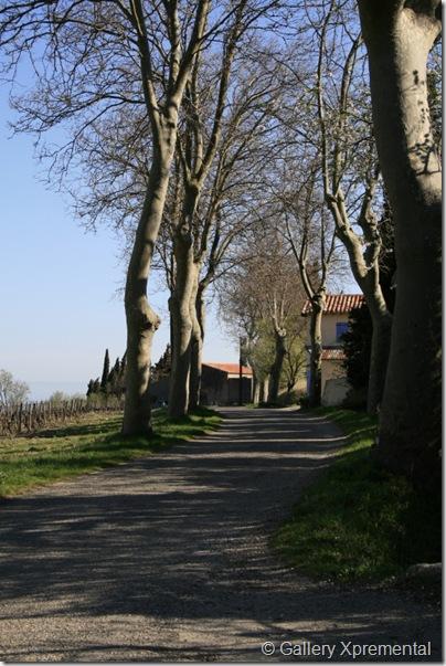 Maison Tranquille 20090319_Alaigne-route_025_3