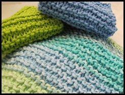 dishcloths 029