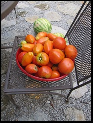 Fruit & more maters 009