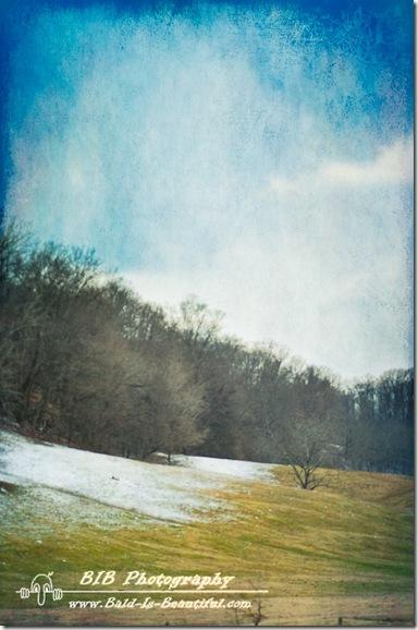 Winter Drive-10
