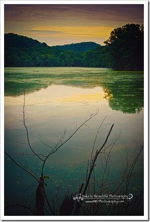 Radnor Lake 7-17-10-4