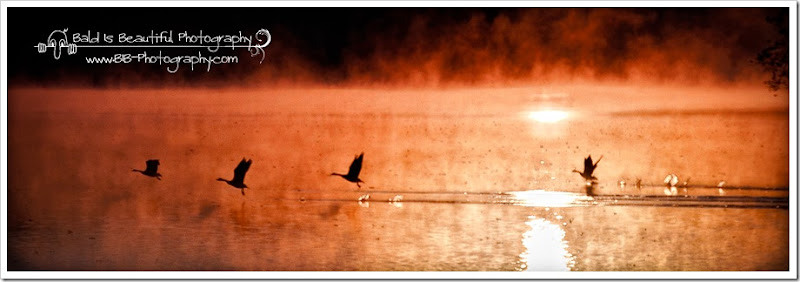 Radnor Lake 11-7-10-029-Edit-Edit-1