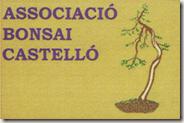 asociacio bonsai castelló180x119