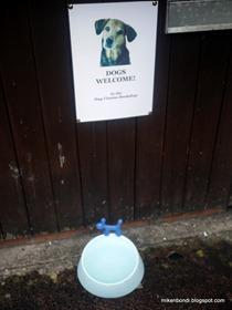 Hay Cinema Bookshop: Dogs Welcome