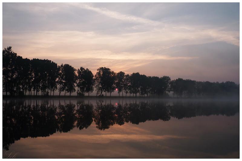 Lever du soleil dans les étangs P1000547