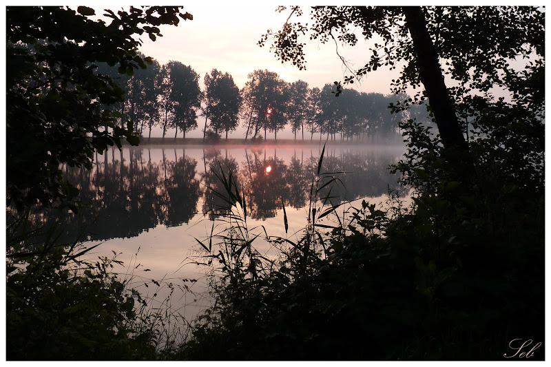 Lever du soleil dans les étangs Levesoleil2