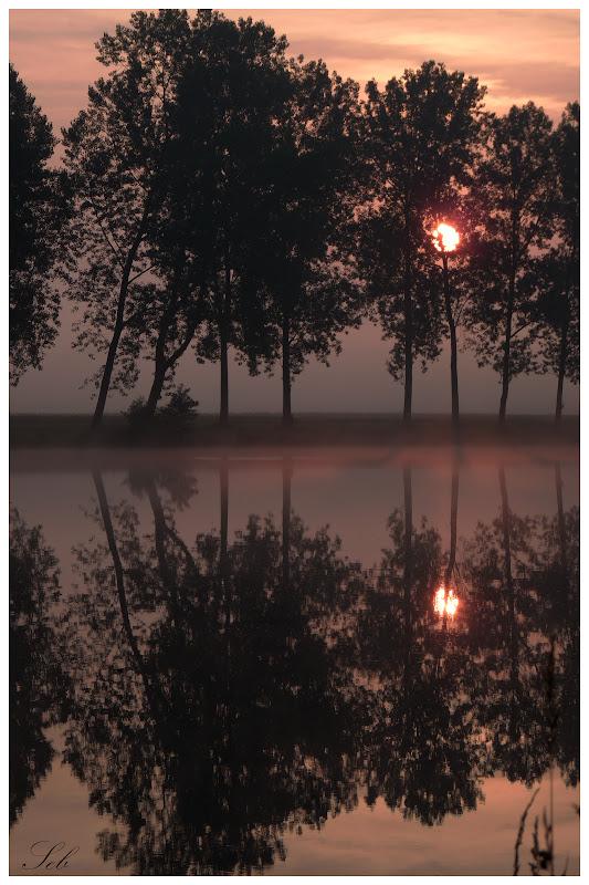 Lever du soleil dans les étangs Levesoleil1