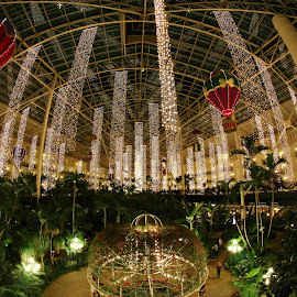 Opryland Hotel at Christmas by Mark Johnston - Buildings & Architecture Office Buildings & Hotels ( fisheye, nashville, christmas lights, hotel, opryland )