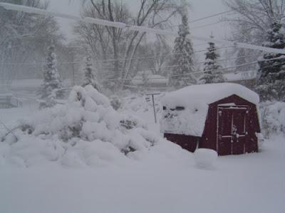 snow, snowstorm, storm