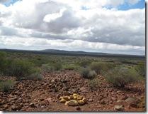 IMG_2004 Yalgoo lookout