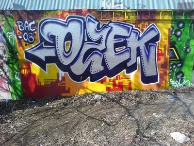 2008_ozek_DSC01204