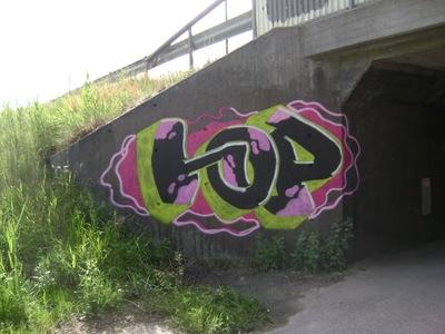 2010_hop_DSC03410