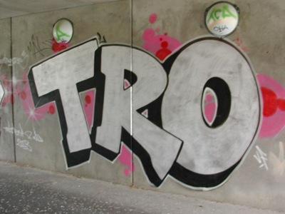 2003_tro_DSCN0117