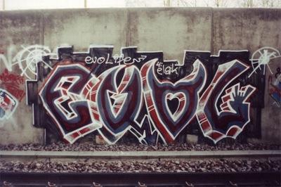evol_obsmuren
