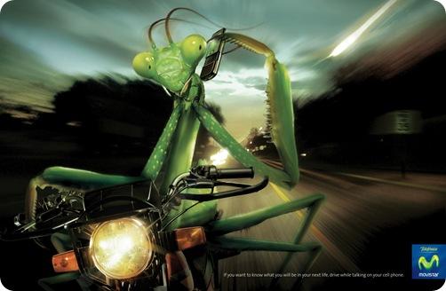 telefonica Mantis